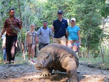 Komodo Island Tour, Bajo, Indonesia
