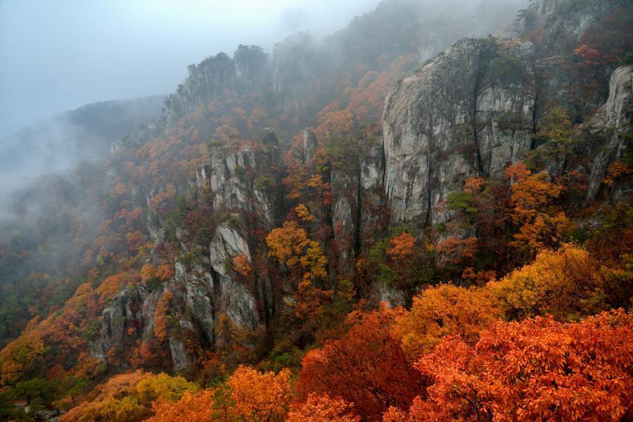 Taman Nasional Korea Selatan - Daedunsan