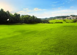 Sentul Highlands Golf Club image3