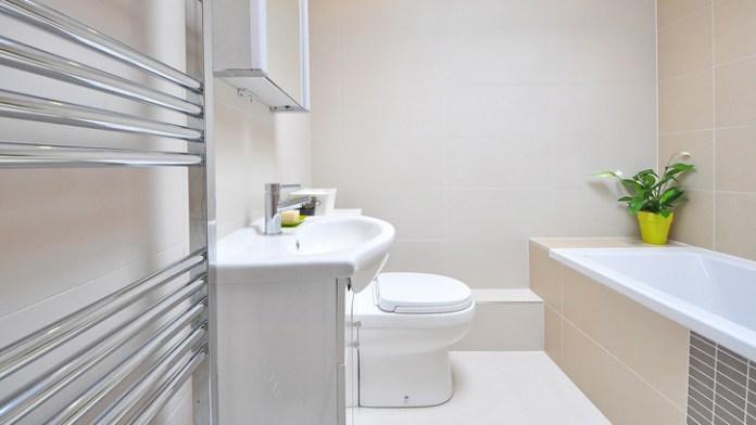 Image result for tanaman hias pembersih udara untuk di toilet