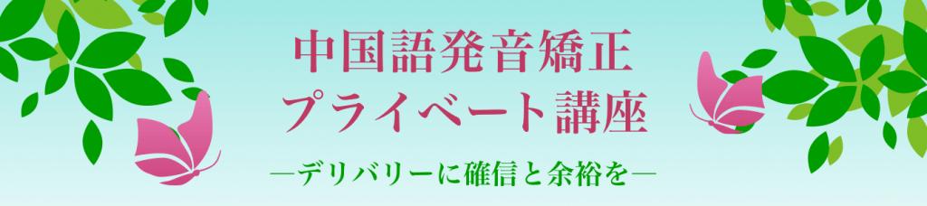 日本人講師による中上級者のための中国語発音矯正プライベート講座―デリバリーに確信と余裕を―