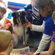 idagrove-feature-library-paws-495x400