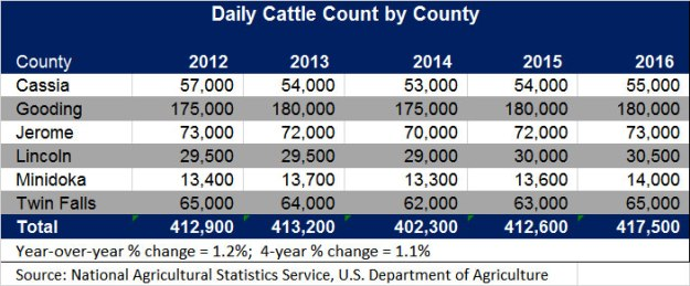 cattle-count