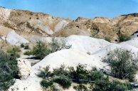 Picacho State Park, CA - 1986