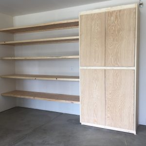 shelves and cupboard with doors closed