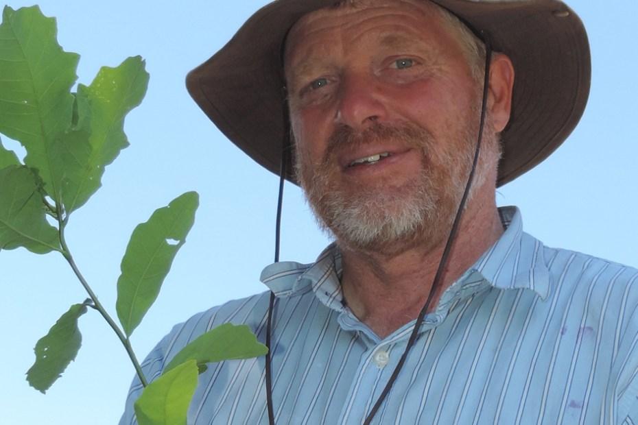 Tree Expert Dave Luker