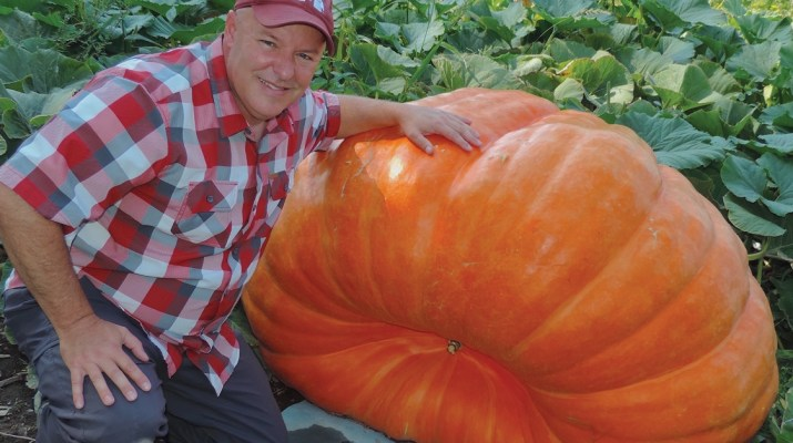 Cliff Warren, grower of giant pumpkins
