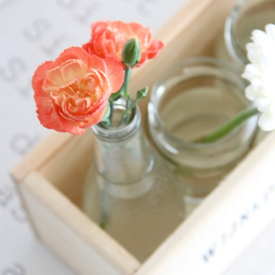 Thursday pics: flowers