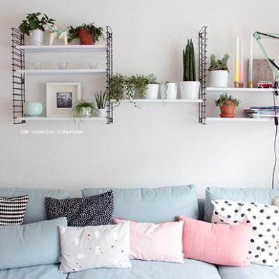 Urban Jungle Bloggers :: my plant shelfie