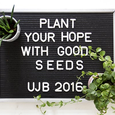 Urban Jungle Bloggers :: planty wishes 2016