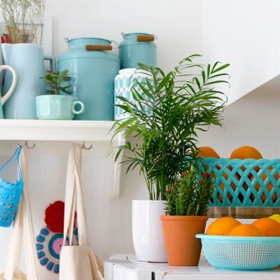 Urban Jungle Bloggers :: Kitchen Greens