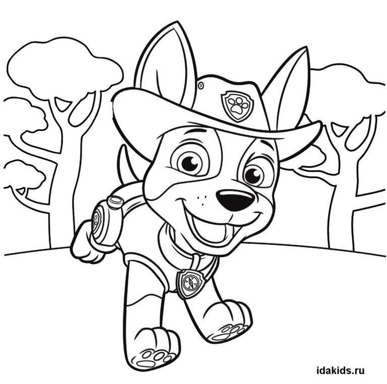 Раскраска Щенячий Патруль Трекер в лесу