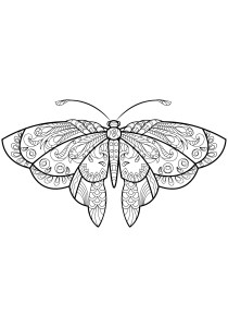 Butterflies - Free printable Coloring pages for kids10