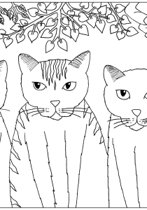 Cats - Free printable Coloring pages for kids12