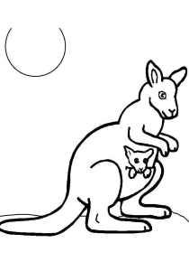 Kangaroos - Free printable Coloring pages for kids8
