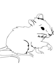 Mouse - Free printable Coloring pages for kids6