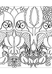Owls - Free printable Coloring pages for kids0