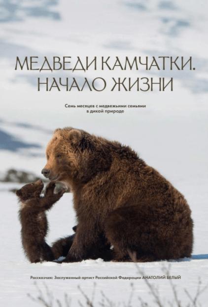 Медведи Камчатки. Начало жизни 2018