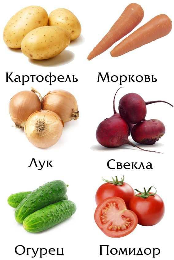 Овощи - картинки для детей