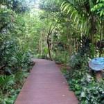 スンゲイ・ブロウ自然公園 Sungei Buloh Wetland Reserve