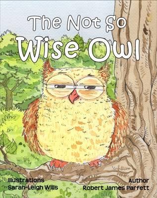 Not So Wise Owl by Robert James Parfett