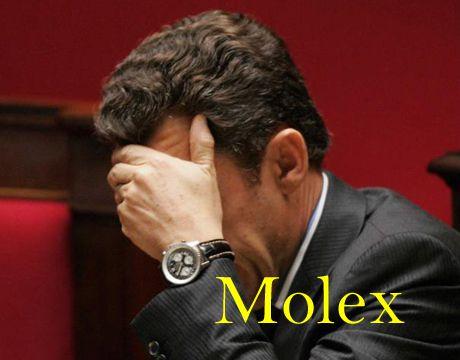 sarkozy-molex.jpg