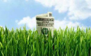 greenwashing1.jpg