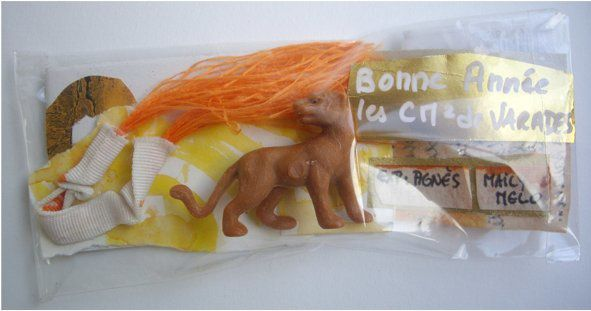 cm2 lionne 2012