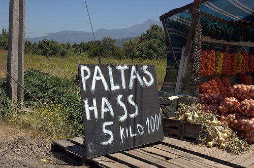 5-kilos-patates.jpg