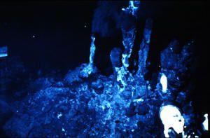 deep-sea.jpg