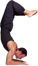 yoga_dude.jpg