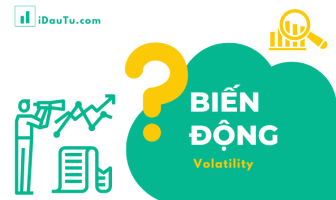 bien-dong-Volatility