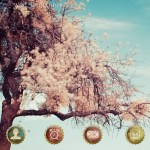 Download Themes Android C Launcher Natural Landscape 16
