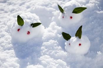 三匹の雪うさぎ