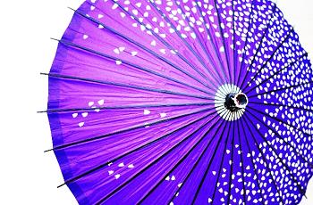 紫色の和傘