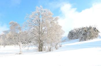 晴れた冬の雪景色