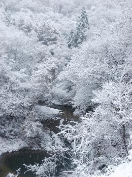 雪に覆われた渓谷