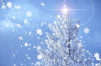 樹氷と雪の結晶
