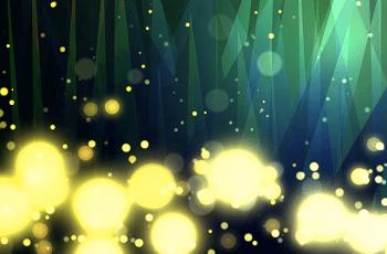 蛍が光っている光景