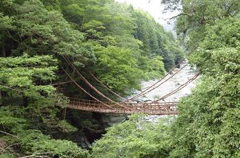 祖谷渓のかずら橋