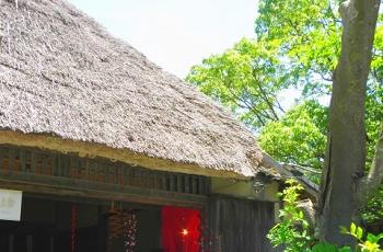 藁ぶき屋根の家