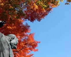 秋の紅葉と天狗の像