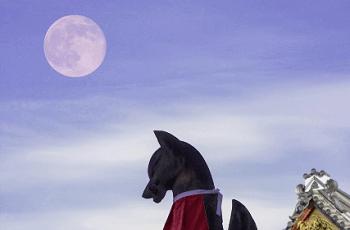 月とお稲荷様