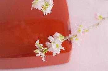 朱塗りの箱と桜の花