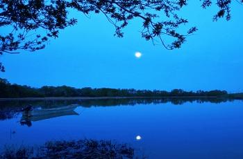 秋の夜の月