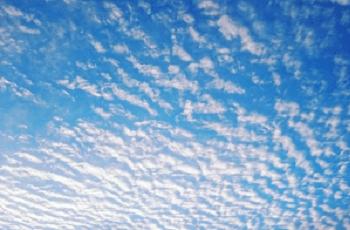 鰯雲と青空