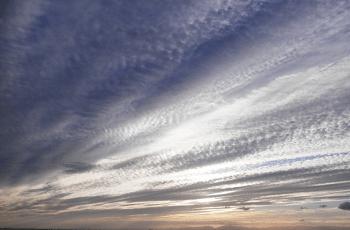 夕暮れ時の鰯雲