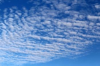 青空に広がる鰯雲