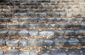 石段に落ちている枯葉
