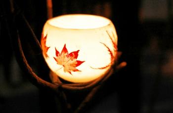 お椀の形の照明